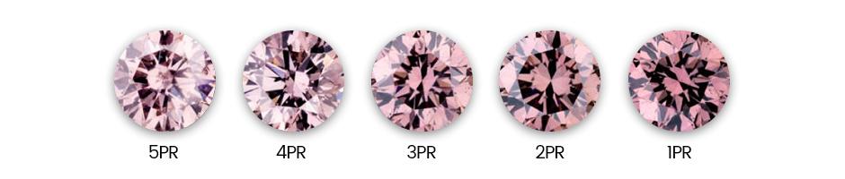 Pink Rosé 2