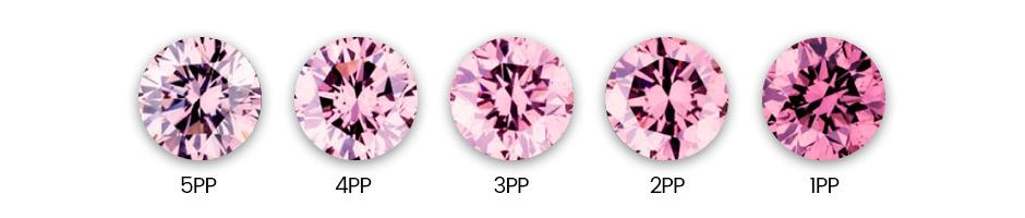 Purplish Pink 2